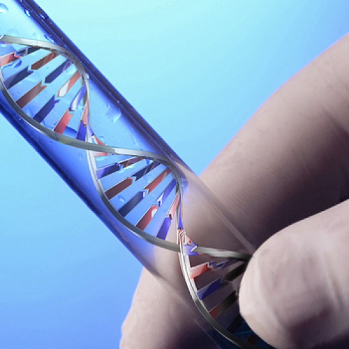 Genetic testing; the process involved in it
