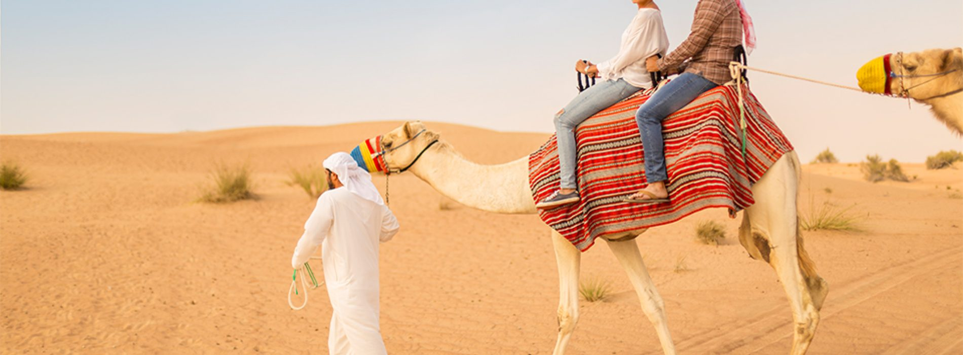 Visit Dubai and its desert safari